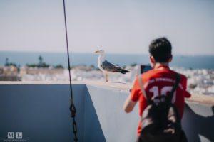 Einzelstunden Spanisch in Cadiz