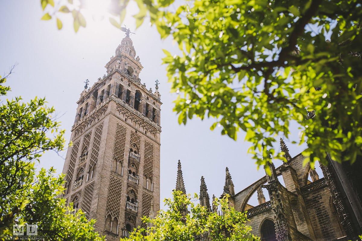 Estudia español en Sevilla