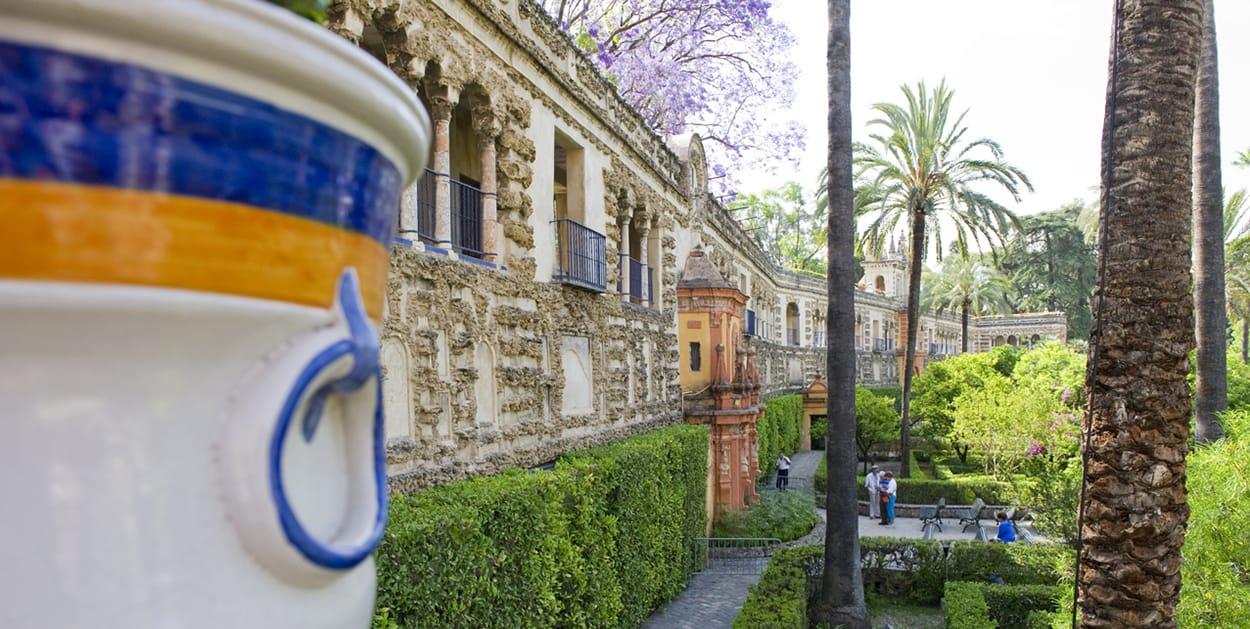 Programa de AP Literatura española en España