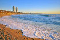 Barceloneta - study abroad Barcelone