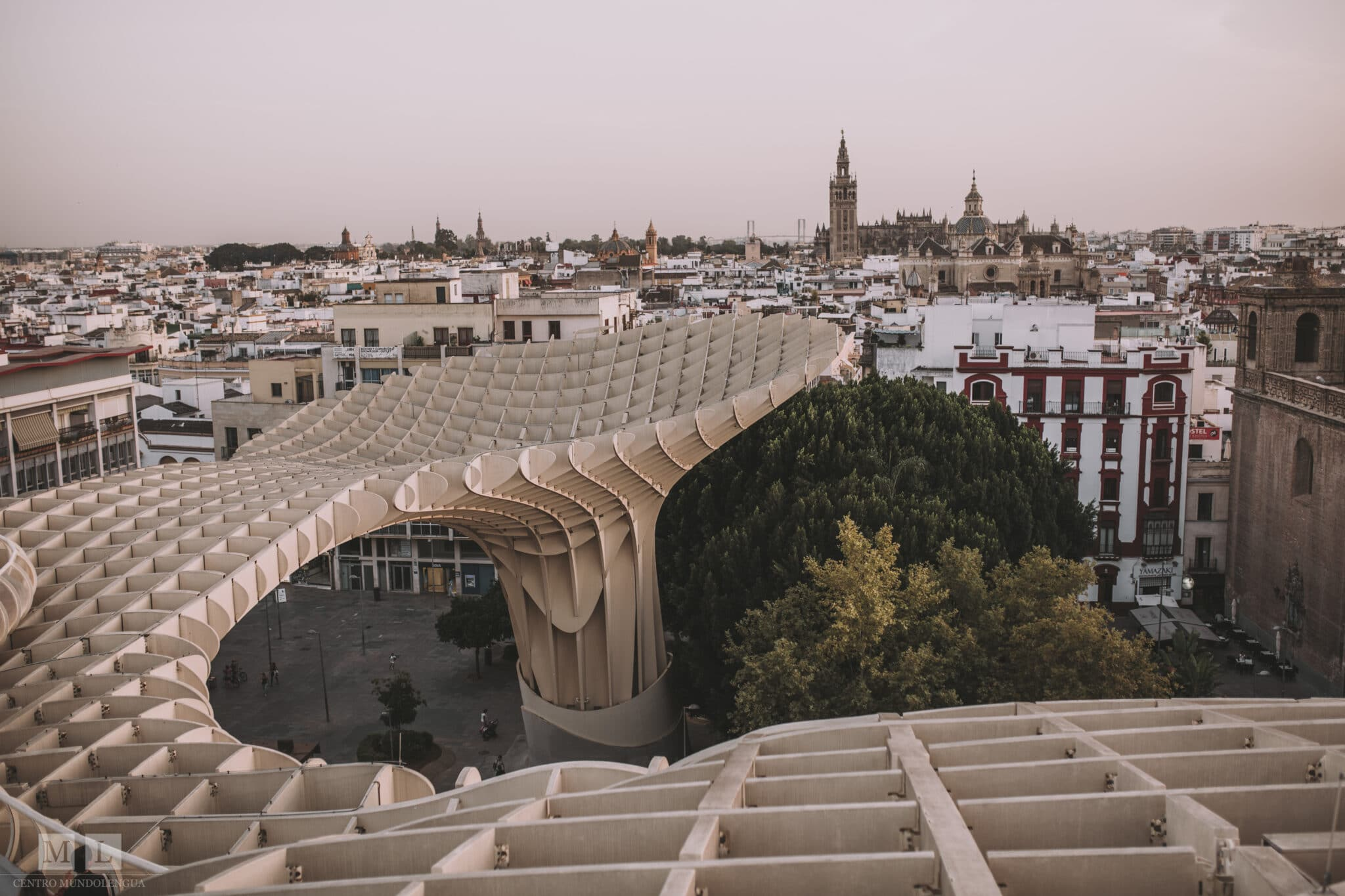Top reasons to study abroad in Sevilla, Spain