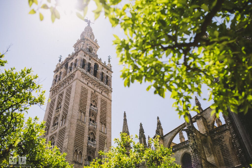 The Cathedral of Sevilla, Spain